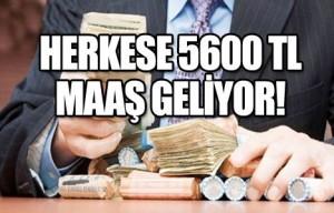 5600tlmaas