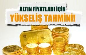 altin_fiyatlari