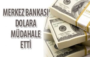 dolar_merkez_bankasi